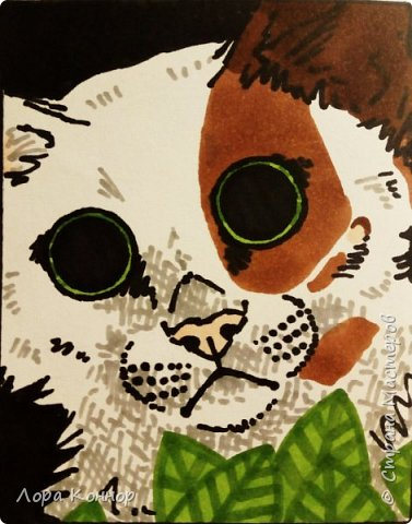 Январь Это коммишен (заказ за деньги) Если окрасы кошек вам покажутся странными, то не пугайтесь - сейчас стало популярным придумывать собственных персонажей. Они могут быть копией своего хозяина в образе какого-либо существа или частью какой-то вселенной, своей или популярного фэндома. фото 9