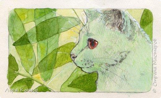 Январь Это коммишен (заказ за деньги) Если окрасы кошек вам покажутся странными, то не пугайтесь - сейчас стало популярным придумывать собственных персонажей. Они могут быть копией своего хозяина в образе какого-либо существа или частью какой-то вселенной, своей или популярного фэндома. фото 1