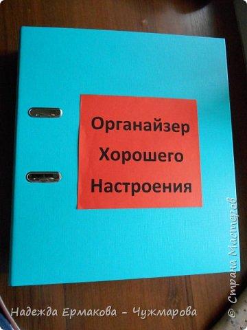 Дума, что подарить брату на день рождения. и очень понравился органайзер Ilarya http://stranamasterov.ru/node/701787. Решила сделать и вот что у меня получилось. фото 1