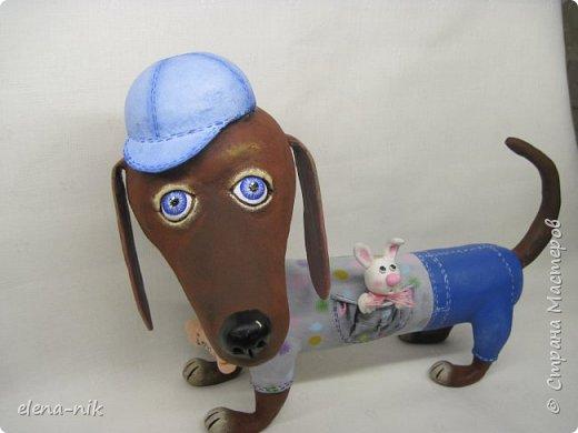 Привет! И опять у меня собака. Знакомьтесь: Патрик. Дружелюбный и веселый пес. фото 6