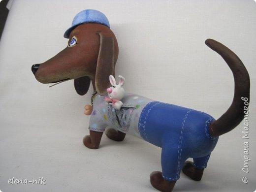 Привет! И опять у меня собака. Знакомьтесь: Патрик. Дружелюбный и веселый пес. фото 8