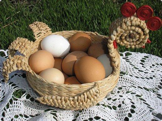 Добрый день, дорогие рукодельницы!  Забавная вышитая крашенка с желторотым цыпленком; плетеный под кулич поднос, курица; распустившаяся зеленая веточка - незаменимый декор, реквизит в сезонной пасхальной декорации. Все это Вы увидите в моем посте, ведь приближается Светлый праздник - Пасха, и я к нему тоже готовлюсь.   1. ПОДНОС С РУЧКАМИ.   фото 11