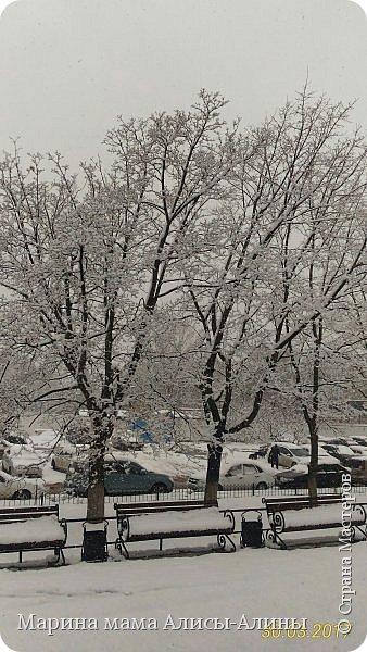 Весна в этом году у нас в Воронеже началась рано.Не смотря на снежную зиму всё быстро потаяло. Мы уже радовались тёплому солнышку!И тут опять пошёл снег!Да не просто снег, а целая метель началась!Это было 30го марта.Немного пофоткала по дороге на работу. фото 7