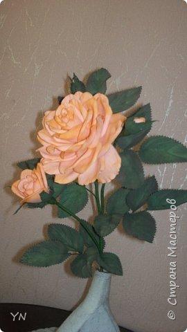 роза из фома фото 3