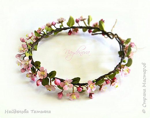 Цветет дикая яблоня ))))))))))) фото 1