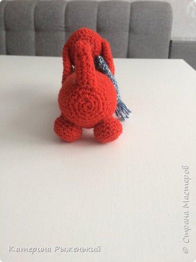 Все привет. Решила я освоить вязание игрушек (амигуруми). Так затягивает. Ну вот что получилось  фото 6