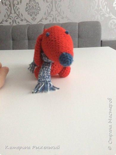 Все привет. Решила я освоить вязание игрушек (амигуруми). Так затягивает. Ну вот что получилось  фото 4