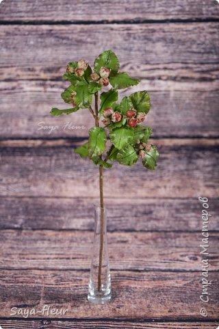 Всем здравствуйте, хотела давно сделать веточку орешков, как на настоящем дереве, когда они уже созрели и их можно сорвать и съесть орешки. Вот такая работа получилась на скорую руку фото 1