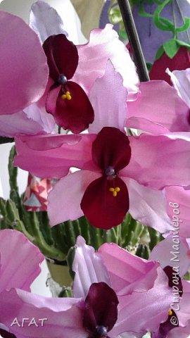 Всем, привет!  Украсила свою молодую , пока не цветущую орхидею, вот такими  цветами. Смотрятся не окне  потрясающе. Цветы делала по видео урокам в интернете. фото 4