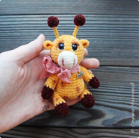Маленький жирафик фото 2