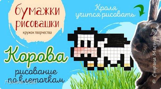 МК. Рисунки по клеточкам корова