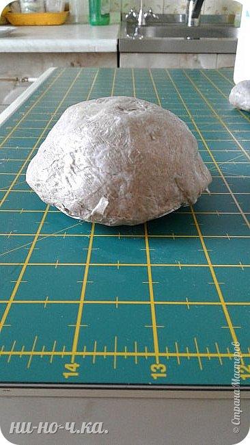 Моя черепашечка в летнем стиле. фото 2