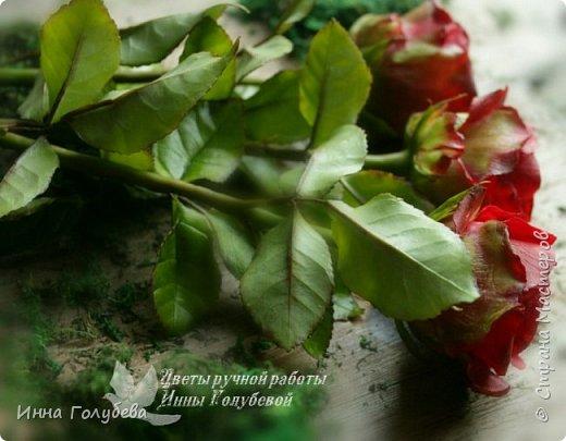 Итак, у меня слепились очередные красные розы на заказ) По их тонировке я сняла небольшоц МК.Надеюсь, пригодится, так как красные розы одни из сложных в тонировке. фото 17