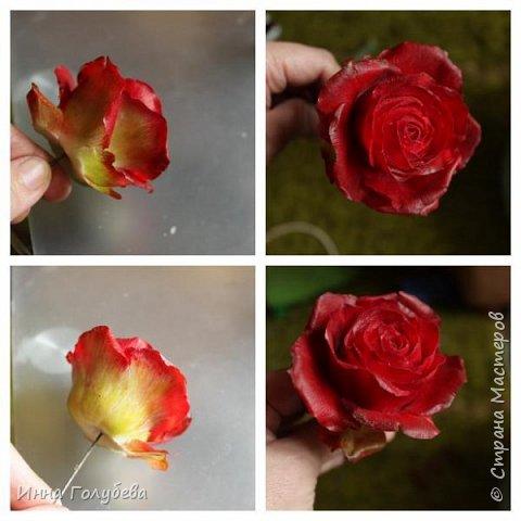 Итак, у меня слепились очередные красные розы на заказ) По их тонировке я сняла небольшоц МК.Надеюсь, пригодится, так как красные розы одни из сложных в тонировке. фото 11