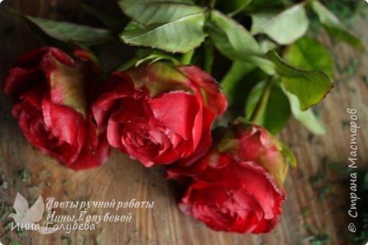 Итак, у меня слепились очередные красные розы на заказ) По их тонировке я сняла небольшоц МК.Надеюсь, пригодится, так как красные розы одни из сложных в тонировке. фото 1
