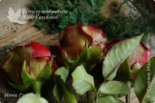 Итак, у меня слепились очередные красные розы на заказ) По их тонировке я сняла небольшоц МК.Надеюсь, пригодится, так как красные розы одни из сложных в тонировке. фото 16