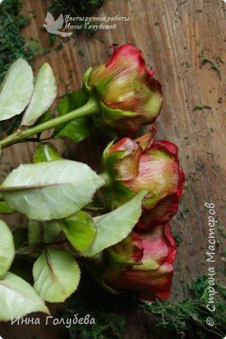 Итак, у меня слепились очередные красные розы на заказ) По их тонировке я сняла небольшоц МК.Надеюсь, пригодится, так как красные розы одни из сложных в тонировке. фото 5