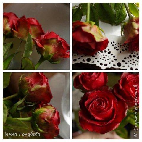 Итак, у меня слепились очередные красные розы на заказ) По их тонировке я сняла небольшоц МК.Надеюсь, пригодится, так как красные розы одни из сложных в тонировке. фото 13