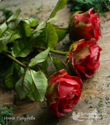 Итак, у меня слепились очередные красные розы на заказ) По их тонировке я сняла небольшоц МК.Надеюсь, пригодится, так как красные розы одни из сложных в тонировке. фото 2