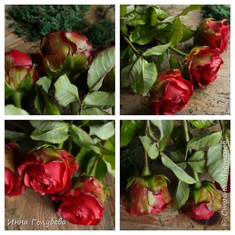 Итак, у меня слепились очередные красные розы на заказ) По их тонировке я сняла небольшоц МК.Надеюсь, пригодится, так как красные розы одни из сложных в тонировке. фото 14