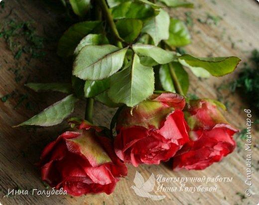 Итак, у меня слепились очередные красные розы на заказ) По их тонировке я сняла небольшоц МК.Надеюсь, пригодится, так как красные розы одни из сложных в тонировке. фото 19