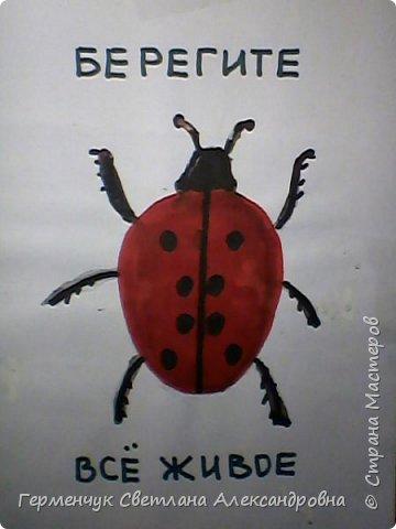 Эту серию раскрасок ребята готовили  по охране природы,животных..Некоторые раскраски оформили в виде плакатов-призывов по правилам поведения на природе и взрослых, и детей  ,чтобы не причинять вред  растениям , животным, насекомым.Получились рисунки-плакаты   проникновенными,убедительными, чтобы  все   задумались -какая  земля  останется  после нас?!!!   Ребята, вы справились   замечательно!!  МОЛОДЦЫ!!! фото 9