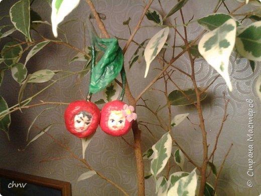 Всем привет! За окном еще снег лежит ,а у меня поспел урожай.Деревце конечно не то,но ничего повисим немножко.Сочная грушка,вместе с веточкой 11.5 см. фото 5