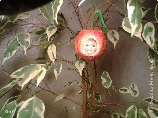 Всем привет! За окном еще снег лежит ,а у меня поспел урожай.Деревце конечно не то,но ничего повисим немножко.Сочная грушка,вместе с веточкой 11.5 см. фото 3