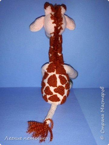 Жирафик Ромик фото 2