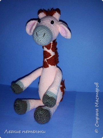 Жирафик Ромик фото 3