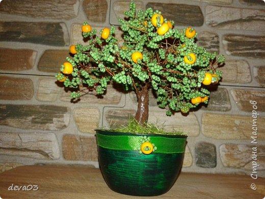 Мой первый опыт в создании деревьев из бисера - апельсиновое дерево