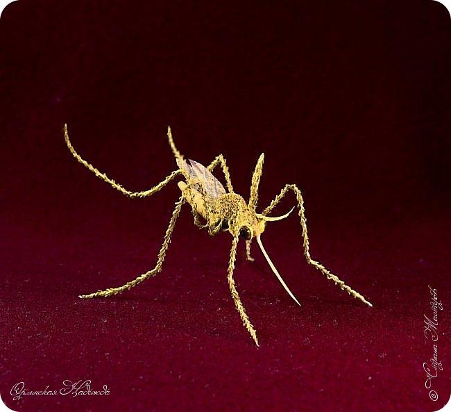 """Здравствуйте дорогие мои мастера и мастерицы! Сегодня я к вам вот с такой маленькой поделкой, размер тельца комарика около четырёх сантиметров и ещё лапки. Подобный комарик у меня уже был, но тот был повторюшка, а теперь я решила сделать своего, перерыла весь интернет, нашла картинку и по ней сделала немного по другому. Итак встречайте...  Я комарик необычный. Я комарик заграничный. Над Москвой кружусь, пищу- """"Шереметьево"""" ищу. Приближаются осадки. СРОЧНО ТРЕБУЮ ПОСАДКИ!   А.Гришин"""