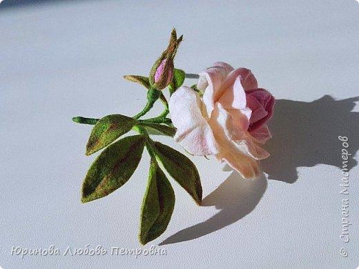 Чайная роза. Элегантный и очень нежный аксессуар-брошь. Шерсть.. фото 1