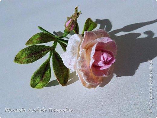 Чайная роза. Элегантный и очень нежный аксессуар-брошь. Шерсть.. фото 4