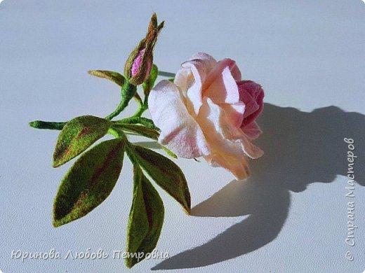 Чайная роза. Элегантный и очень нежный аксессуар-брошь. Шерсть.. фото 6