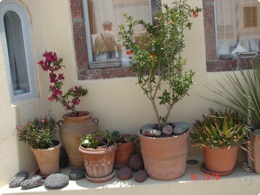Здравствуйте, дорогие жители нашей прекрасной СМ! Приглашаю ВАС совершить  небольшое путешествие на греческий остров Санторини. фото 33