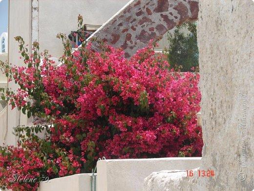 Здравствуйте, дорогие жители нашей прекрасной СМ! Приглашаю ВАС совершить  небольшое путешествие на греческий остров Санторини. фото 38