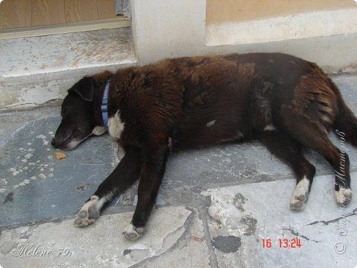 Здравствуйте, дорогие жители нашей прекрасной СМ! Приглашаю ВАС совершить  небольшое путешествие на греческий остров Санторини. фото 39