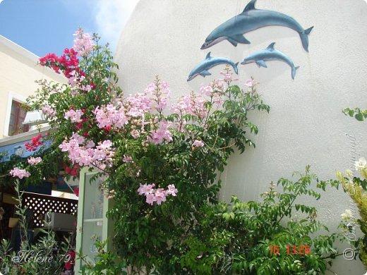 Здравствуйте, дорогие жители нашей прекрасной СМ! Приглашаю ВАС совершить  небольшое путешествие на греческий остров Санторини. фото 40