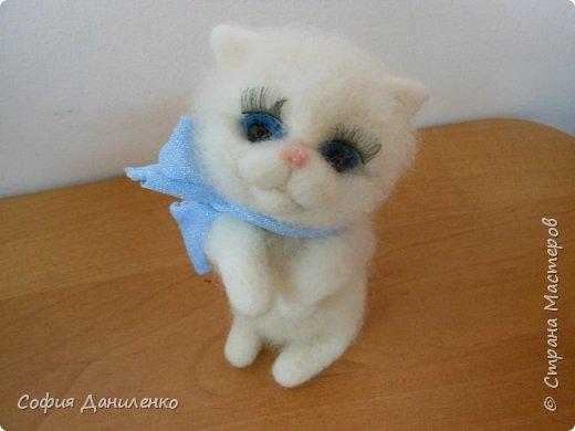 Кошечка Маруся