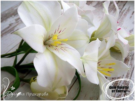 Цветы альстромерии фото 2