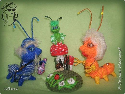 Знакомьтесь гусениц Пашка. В теле проволочный каркас. фото 9