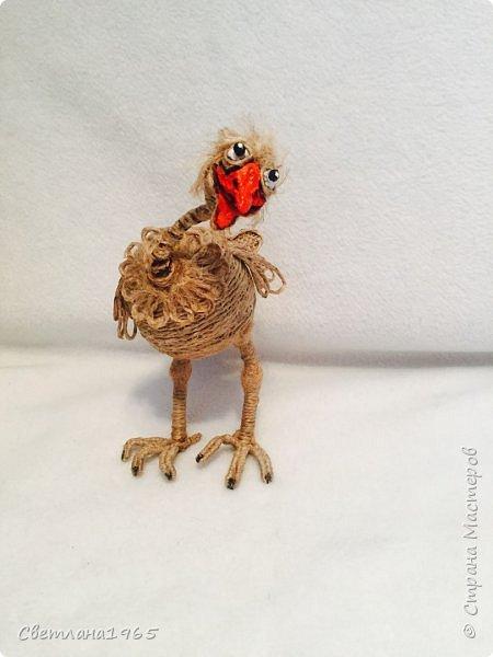 Приветствую!Карикатура на страуса,никак не желал фоткаться... фото 4