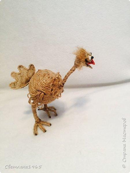 Приветствую!Карикатура на страуса,никак не желал фоткаться... фото 7