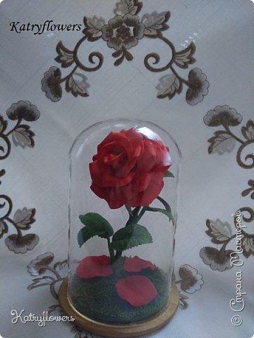 """Здравствуй, любимая Страна Мастеров! Это моя новая работа - роза в колбе """"Beauty and the Beast"""". Все, наверняка, смотрели либо фильм, либо мультик """"Красавица и чудовище"""" или же читали книгу. Меня на создание этой чудесной розы вдохновил мультик и афиша к диснеевскому фильму, который я пока так и не посмотрела. Она, конечно, не точь в точь... Но определенно точно могу сказать, что теперь хочу научиться делать напыление на такие колбы и баночки, чтобы получился морозный узор. фото 5"""