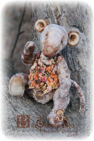 Мишка Андрюшка - тискальный мальчишка с мягким пузиком, улыбчивый и с добрыми глазами... Славный малый. Любит спорт...но... жуткий сладкоежка...)))  фото 3