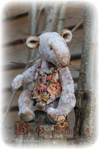 Мишка Андрюшка - тискальный мальчишка с мягким пузиком, улыбчивый и с добрыми глазами... Славный малый. Любит спорт...но... жуткий сладкоежка...)))  фото 2