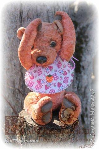 Мишка Андрюшка - тискальный мальчишка с мягким пузиком, улыбчивый и с добрыми глазами... Славный малый. Любит спорт...но... жуткий сладкоежка...)))  фото 4