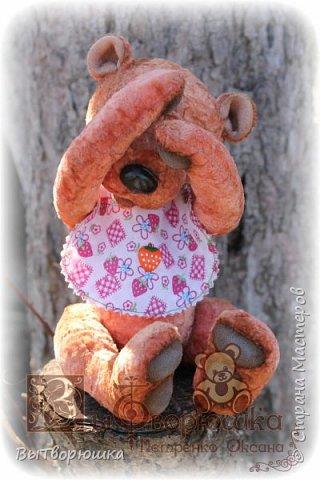 Мишка Андрюшка - тискальный мальчишка с мягким пузиком, улыбчивый и с добрыми глазами... Славный малый. Любит спорт...но... жуткий сладкоежка...)))  фото 5