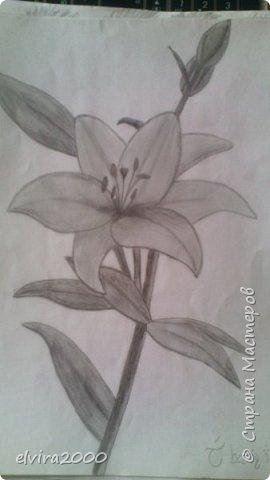 Парочка моих новых работ :) фото 6
